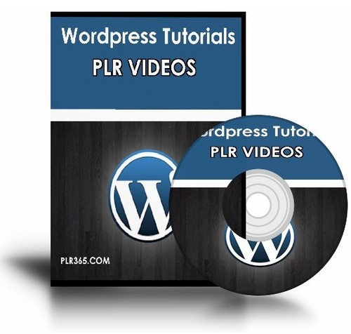 Product picture PLR Wordpress Video Tutorials - Big PLR Video Pack!